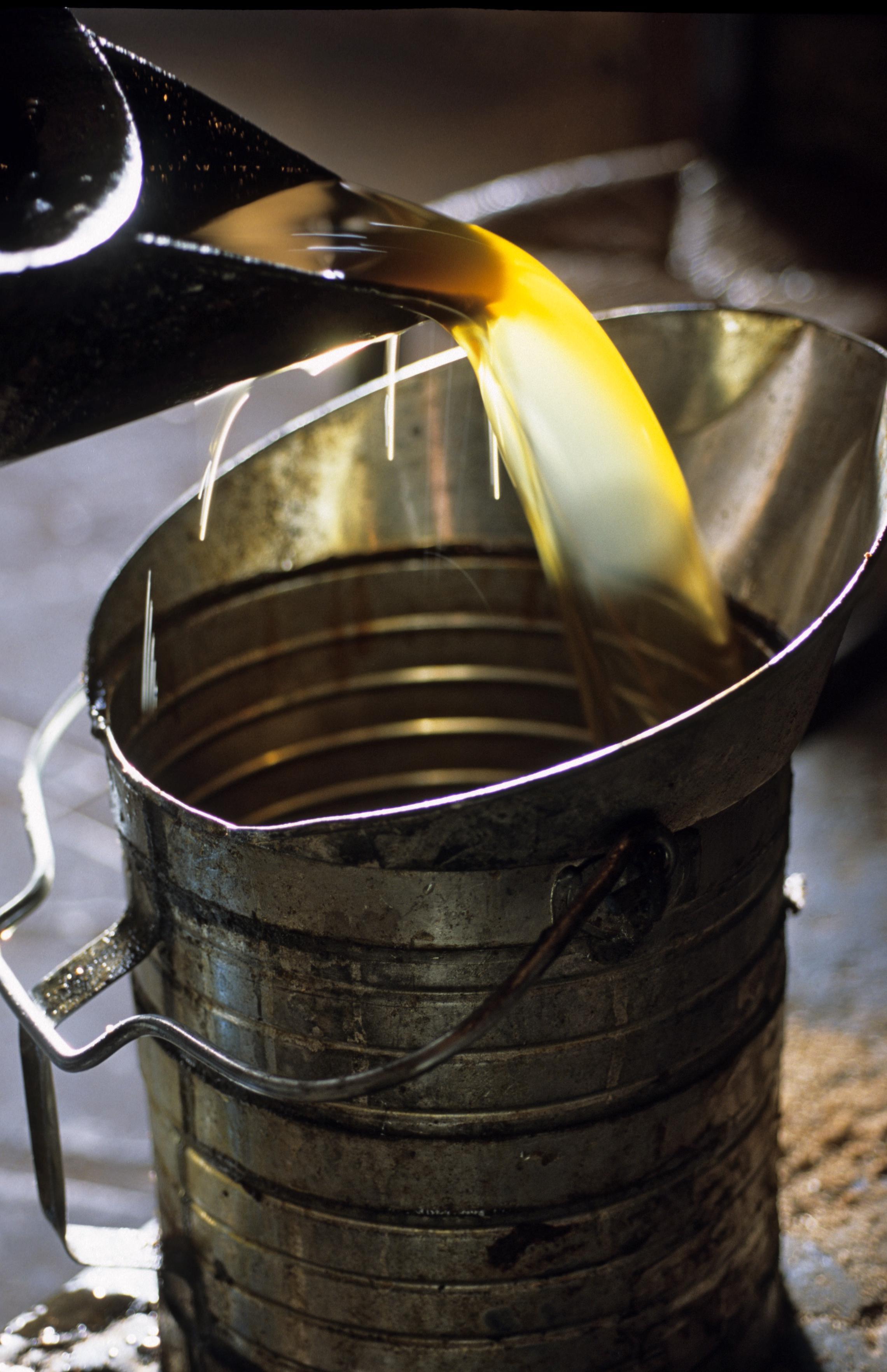 huile de noix 46600